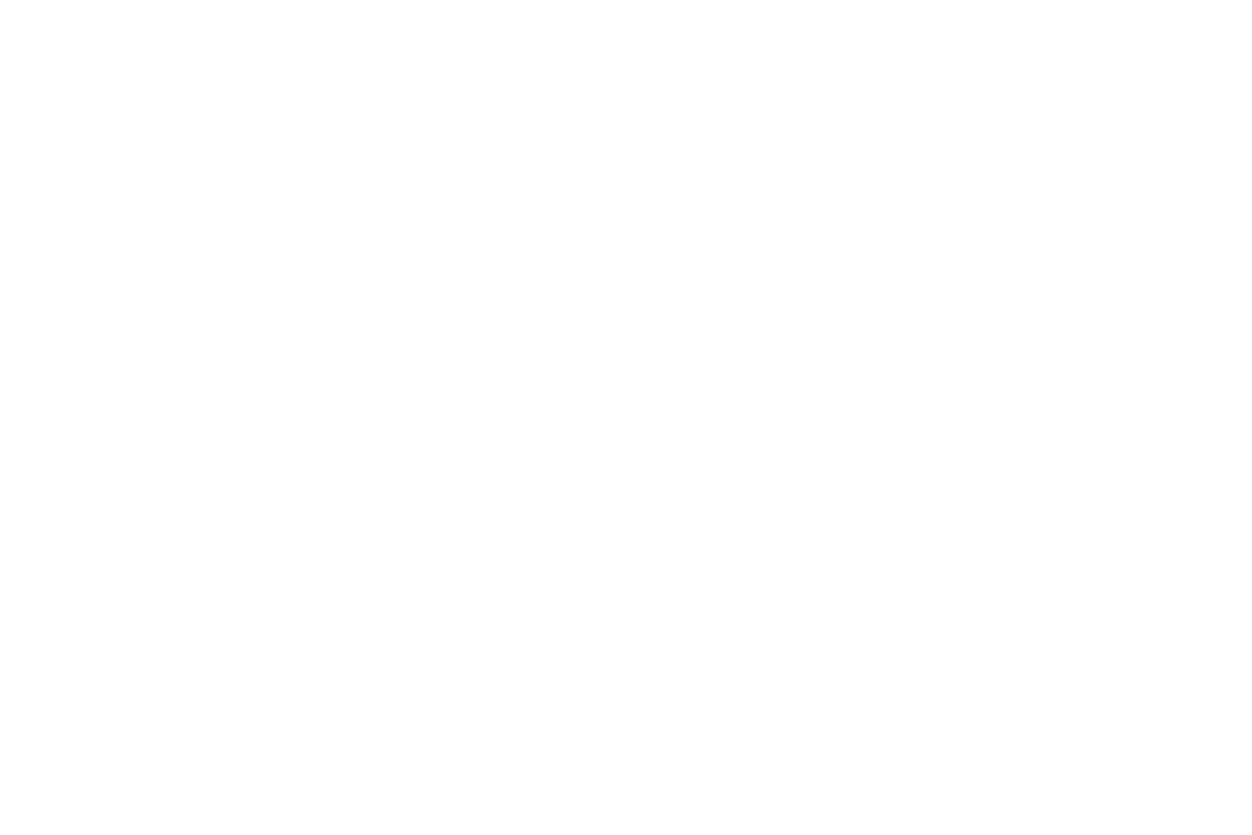 MOD-Assistants-Logo-WHITE